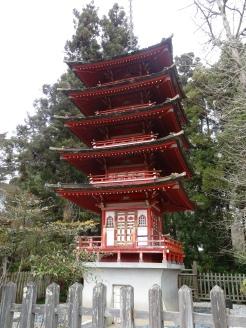 Japaense Tea Gardens